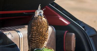 05/2017 Bentley Bentayga Falconry