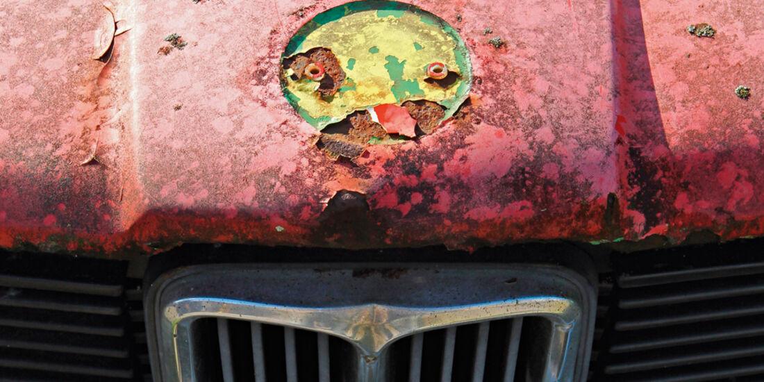 Autofriedhof Rust, BMW, Niere