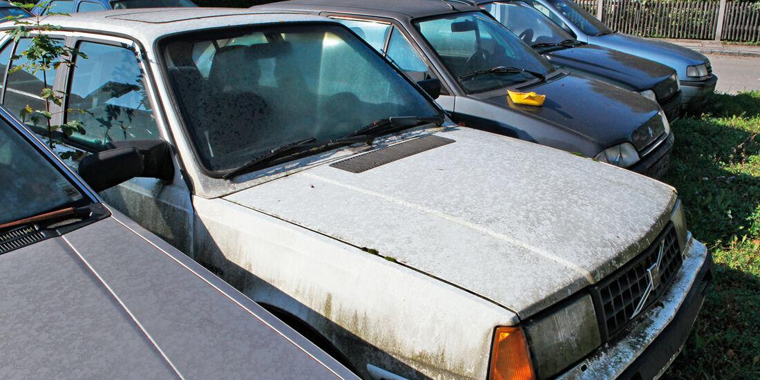 Autofriedhof Rust, Volvo 340 GL