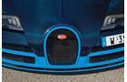 Bugatti Veyron 16.4 Grand Sport Vitesse, Kühlergrill