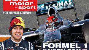 Formel 1 Buch 2011