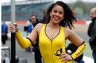 Formel 3 Girls - Silverstone 2014