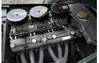 Frazer Nash Le Mans Replica, Motorblock, Motor