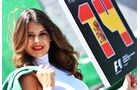 Girl - Formel 1 - GP Brasilien - 12. November 2017