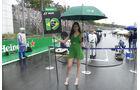 Grid Girls - GP Brasilien 2016 - Interlagos - Formel 1