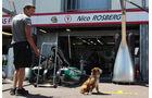 Hamiltons Hund Roscoe - Formel 1 - GP Monaco - 22. Mai 2013