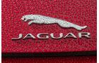 Jaguar F-Type 4x4, ams2015, Logo