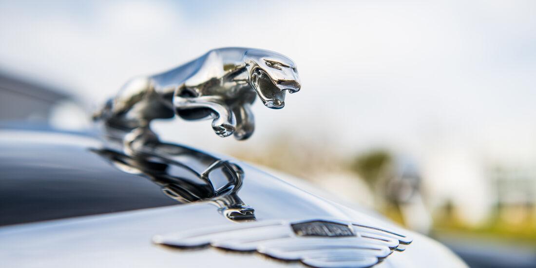 Jaguar Mark IX, Kühlerfigur