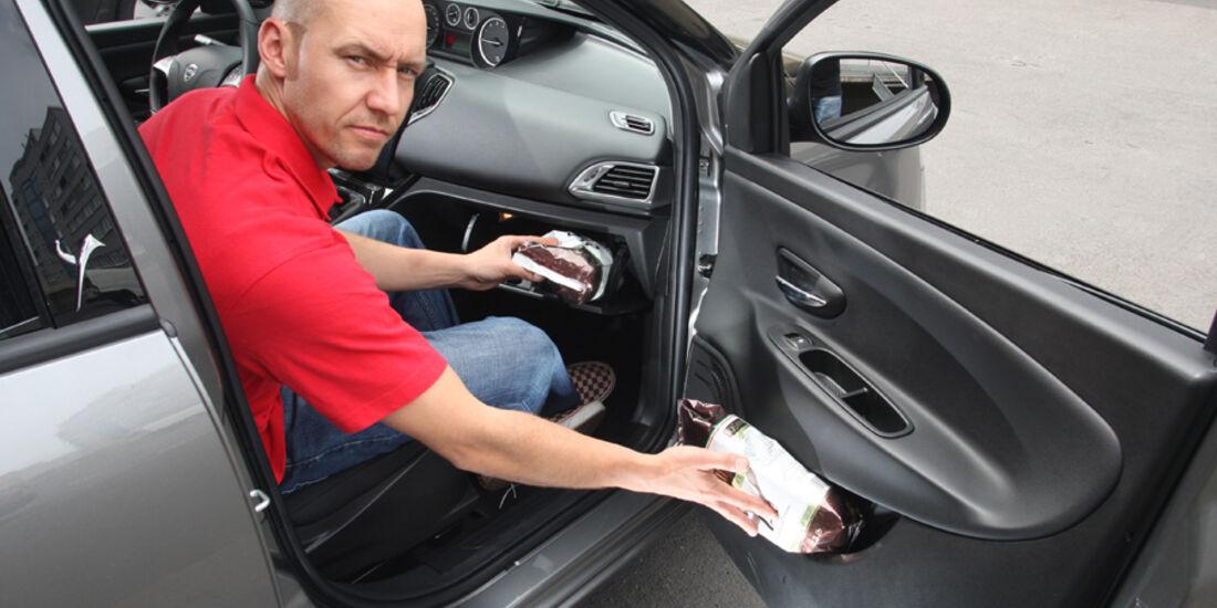 Lancia Ypsilon 0.9 Twinair, Beifahrertür, Dani Heyne