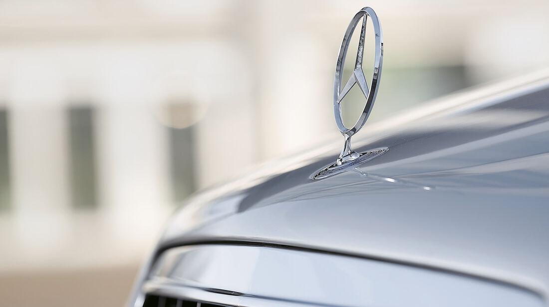 Mercedes C 43 AMG, Stern