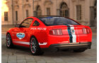 Mustang Safety Car