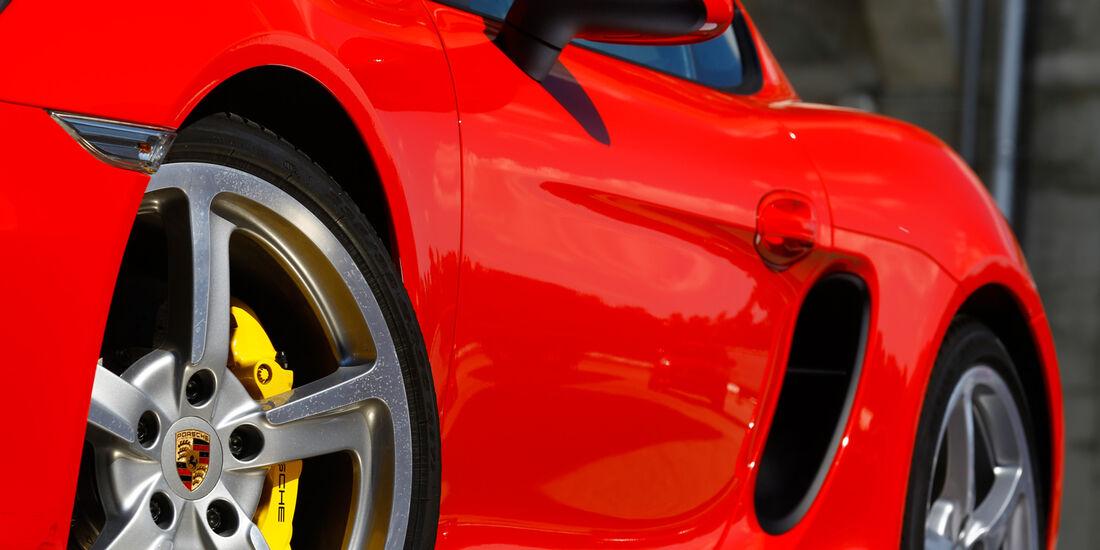 Porsche Cayman S, Seitenführung