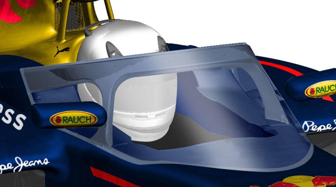 Red Bull - Cockpitschutz - Concept - 2016