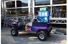 Red Bull - Formel 1 - GP Ungarn - 23. Juli 2014