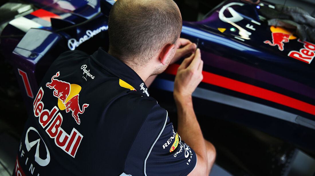 Red Bull RB9 Lack