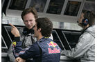 Red Bull-Teamchef Horner 2009