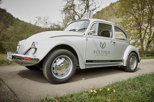 Voltimer Käfer