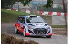 WRC Rallye Frankreich 2014, Thierry Neuville, Hyundai